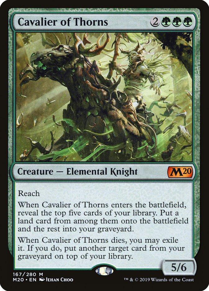 Cavalier of Thorns