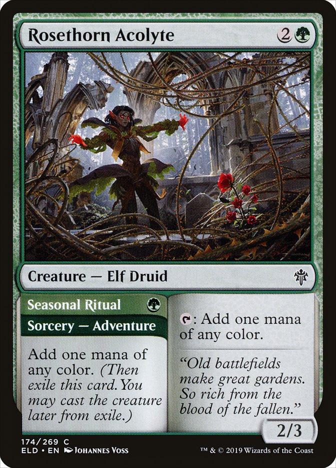 Rosethorn Acolyte // Seasonal Ritual
