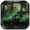 nikostra's Foto